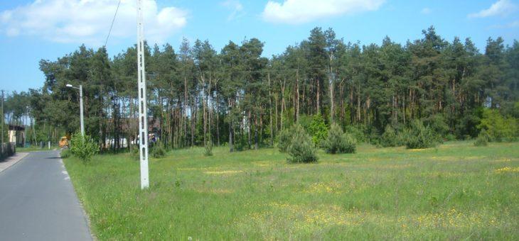 Działka budowlana pod Warszawą – PRZETARG